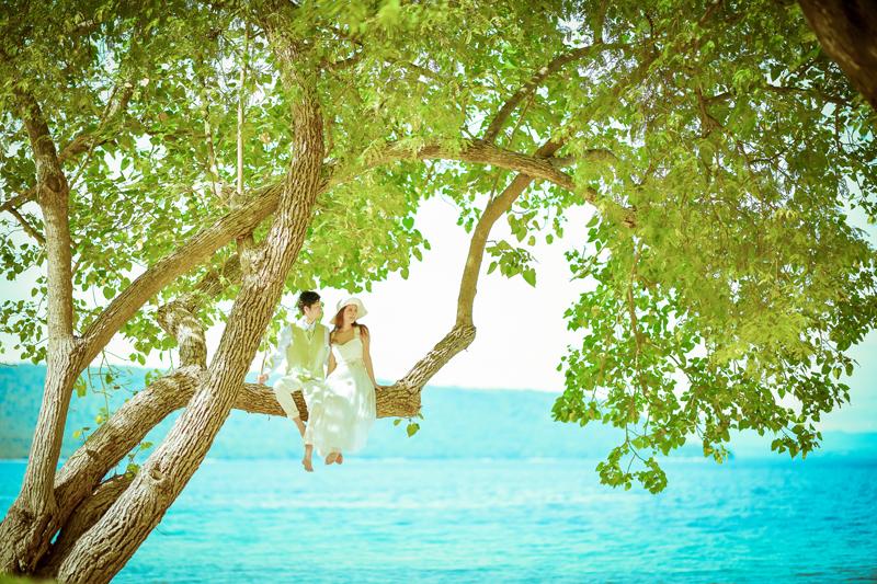 海岸沿いの木と2人 ウェディング風景